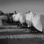Scurte observații despre litoralul românesc în 2012
