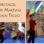 Steaguri, evantaie și arte marțiale