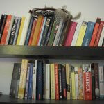 O viață minimalistă – #2 Cărțile