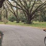Prima dată cu bicicleta la job – în București
